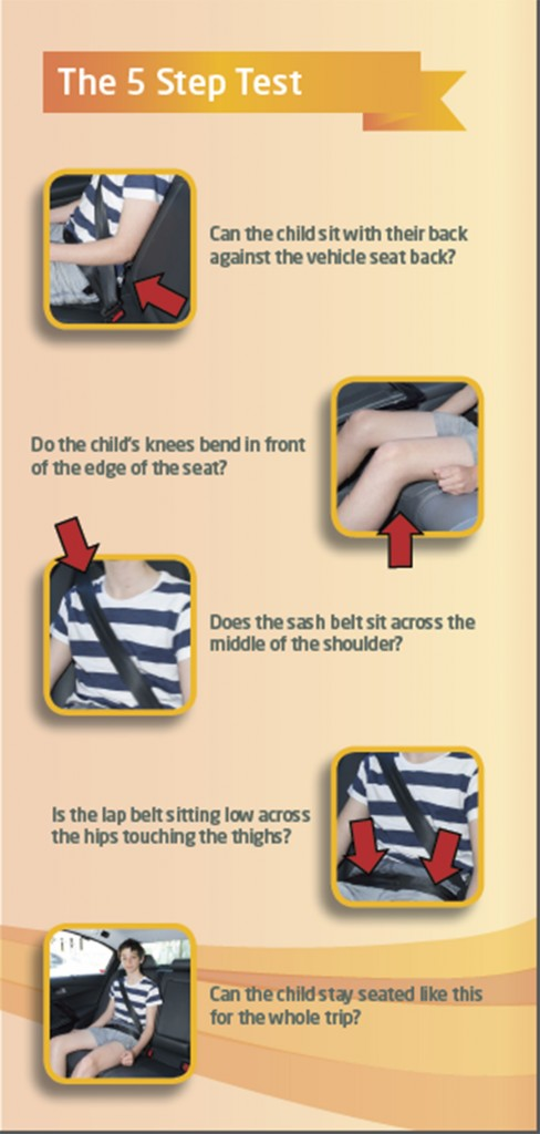 A child should only use an adult seatbelt when they are big enough to meet all parts of the '5 step test'.