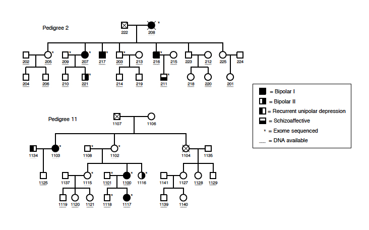 family tree dna project
